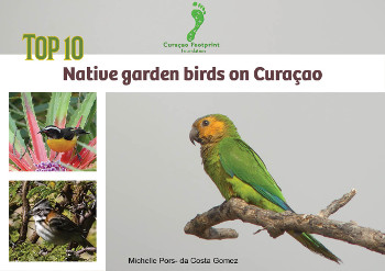 Boek Top 10 inheemse tuinvogels ENG 350x